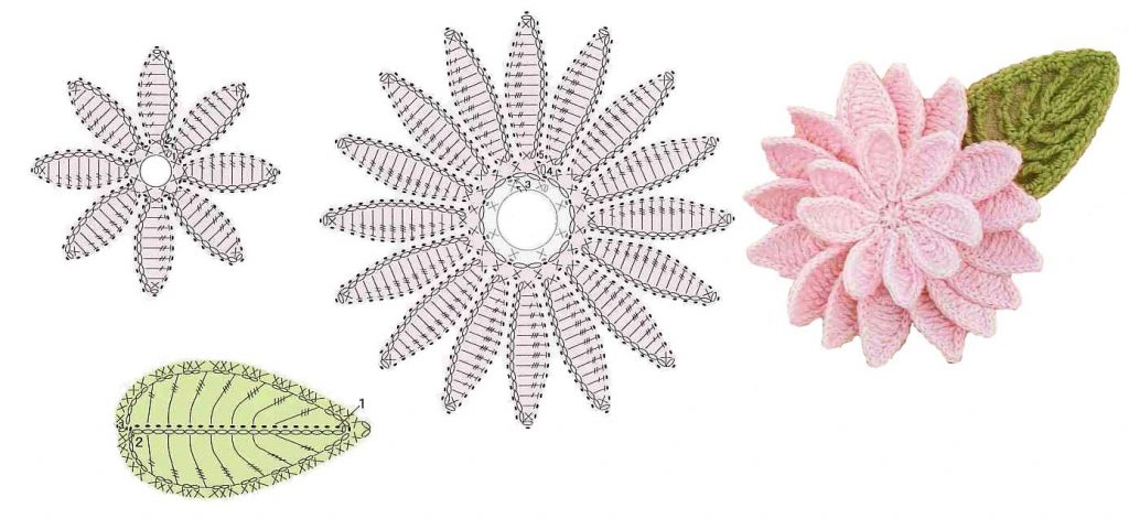 Daisy rose free crochet pattern flower diagram